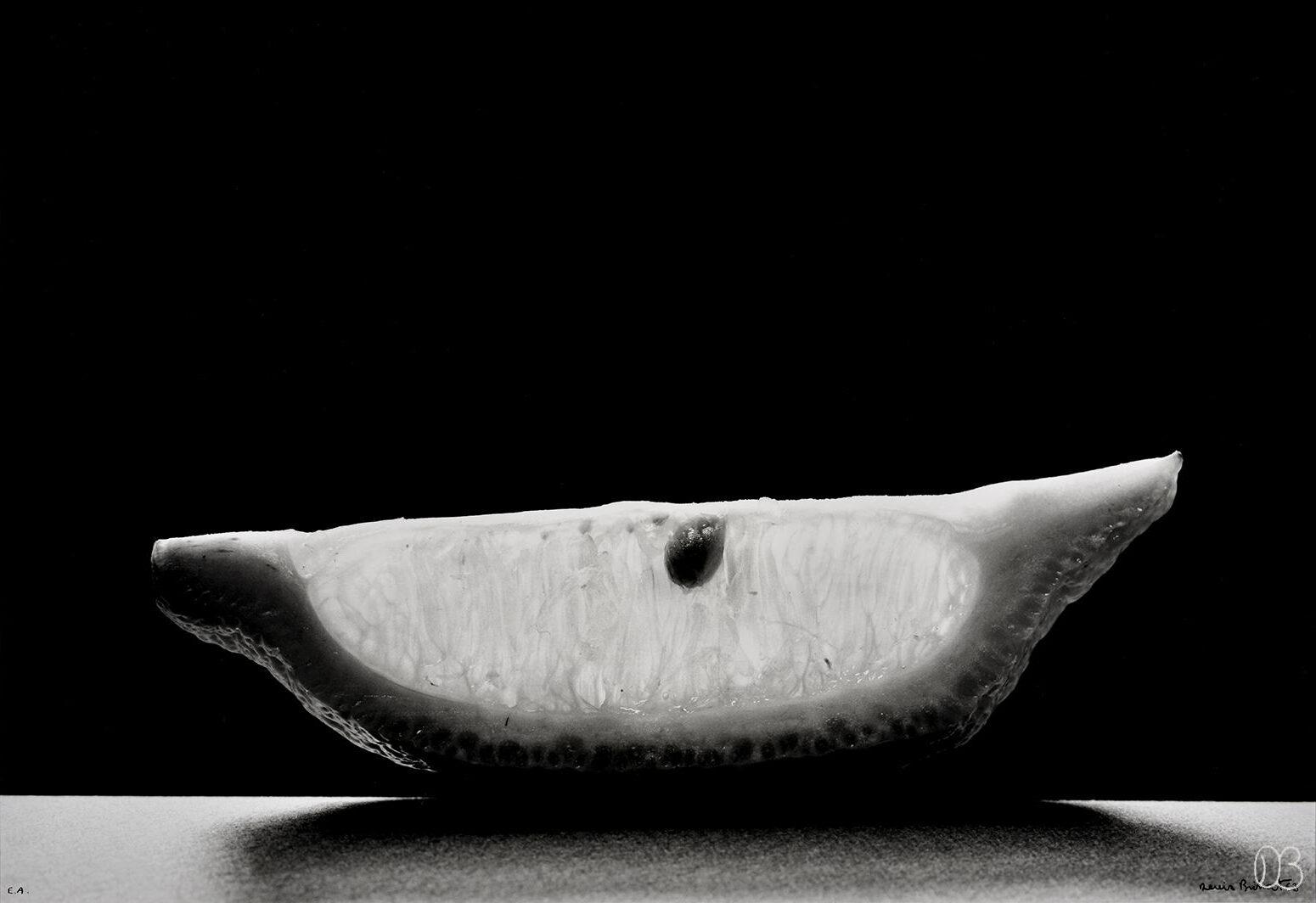 Tranche de citron. 1963 Dim en cm 32x47